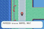 Route 17 Rappel Max RFVF.png