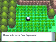 Route 225 Max Repousse DP.png