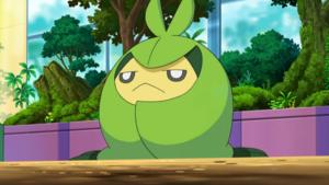 Pokémon de Couverdure