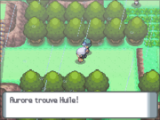 Route 215 Huile DP.png