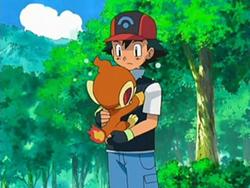 Dp053 pok p dia - Pokemon ouisticram ...