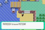 Route 104 Potion RSE.png