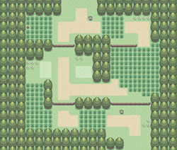 Route 202.png
