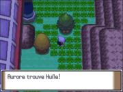 Route 206 Huile PT.png