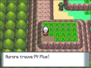 Route 225 PV Plus DP.png