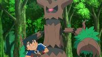 """Résultat de recherche d'images pour """"pokemon desseliande"""""""