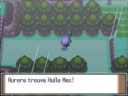 Route 215 Huile Max PT.png