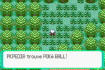Route 104 Poké Ball RSE.png