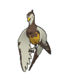 Sprite 521 ♀ chromatique XY.png